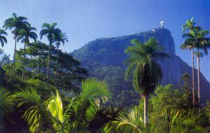 Der Corcovado im Tijuca Nationalpark