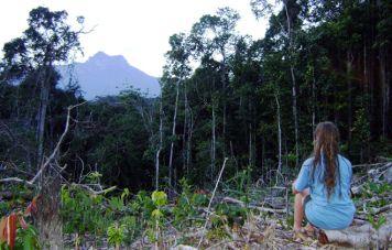 Das Ziel: Der Gipfel des Pico da Neblina