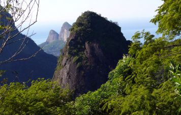 Floresta da Tijuca Nationalpark