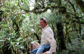 Durch märchenhaft anmutende Wälder