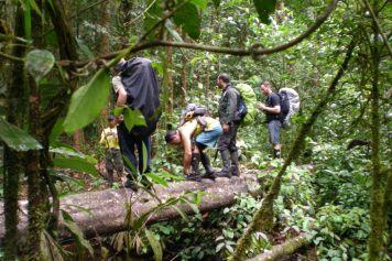 Auf dem Weg zum Monte Caburaí