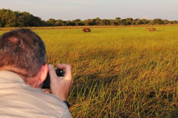 Foto-Safari im südlichen Pantanal