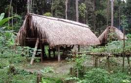 Yanomami Jagd-Lager