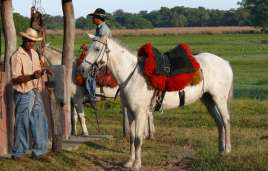 Pantaneiro mit Pferd