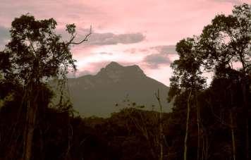 Pico da Neblina zum Sonnenuntergang