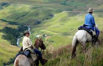 Pferde und Reiter werden beim bergauf und bergab gefordert