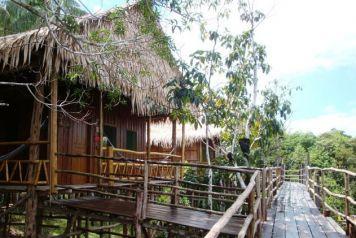 Dschungel-Lodge